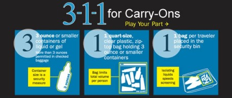 Transportation Security Adminstration (TSA): 311 for Carry-Ons/Air Travel graphic